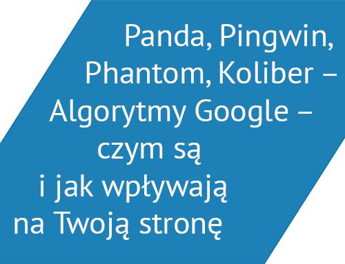 Panda, Pingwin, Phantom, Koliber - Algorytmy Google - czym są i jak wpływają na Twoją stronę